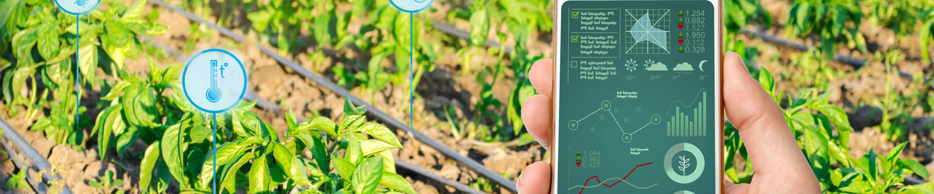 innovation-digitalisierung-landwirtschaft_
