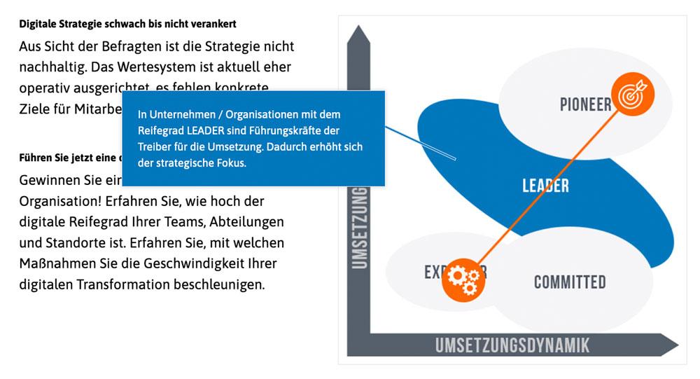 Digitaler Reifegrad: Digital Leader